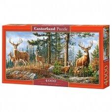 Castorland dėlionė PRIDE OF LONDON, 4000 det.