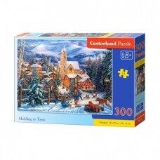 CASTORLAND dėlionė Du kačiukai, 200 det.